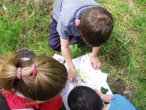 bambini,natura,ascolto,educazione,ecoliteracy,ecologia