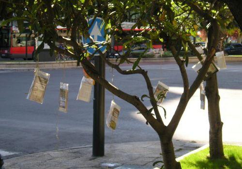 libri_sugli_alberi.jpg