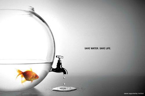 save-water-save-life.jpg