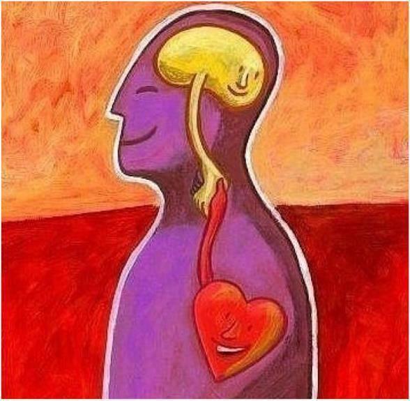 cuore-cervello-pace